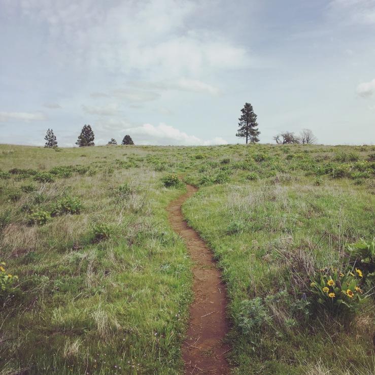 Memaloose Hills 1