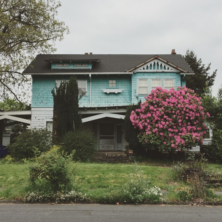 Baby Blue House