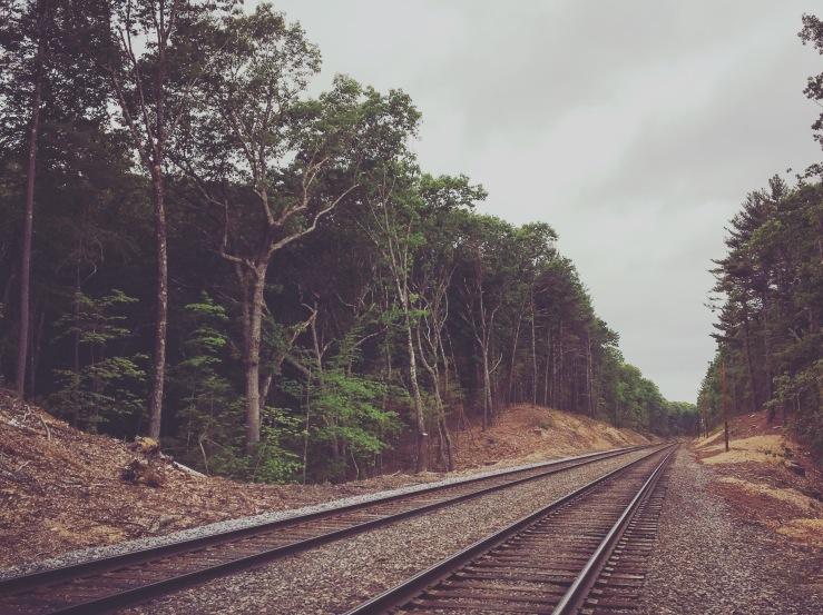 Walden Tracks