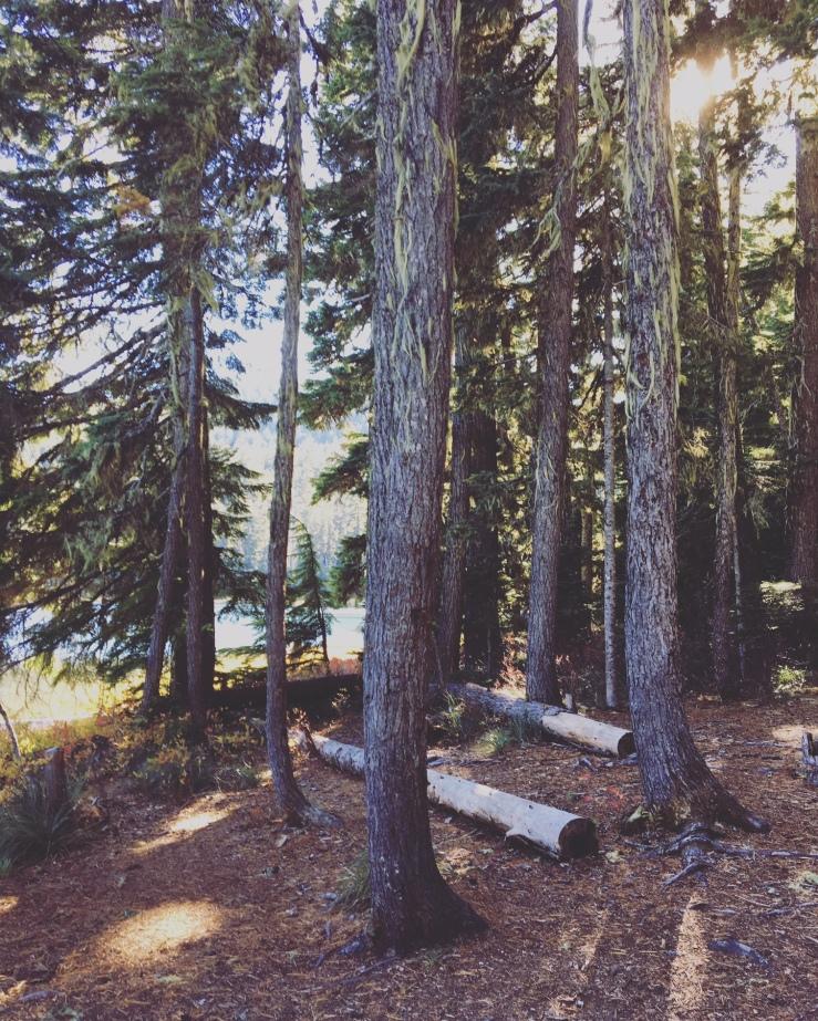 Lower Twin Lake Oct 2018